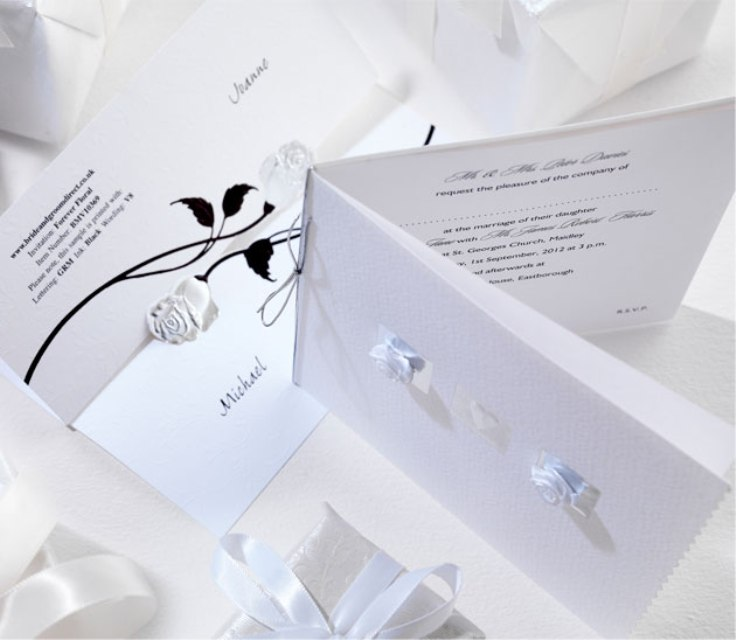 Bride Groom wedding invites are certainly worth checking out their